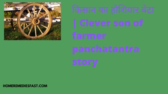किसान-का-होशियार-बेटा-Clever-son-of-farmer-panchatantra-story