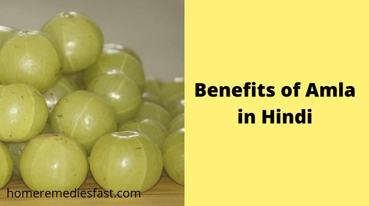 Benefits of Amla in Hindi