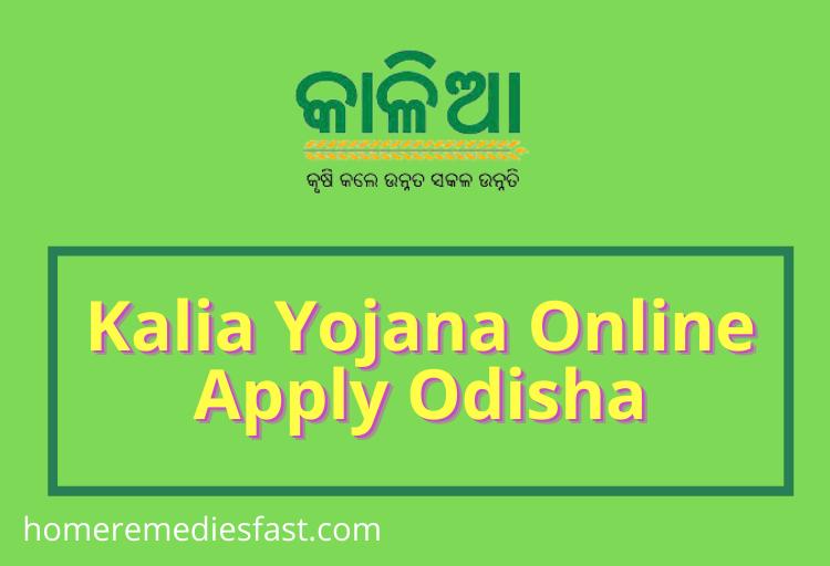 Kalia Yojana Online Apply Odisha